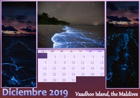 2019 horizontal yearly calendar example 2
